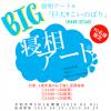 寝相アート®「巨大!こいのぼり」令和元年5月1日開催(※応募方法はこちらから)